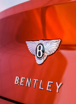 Bentley car leather
