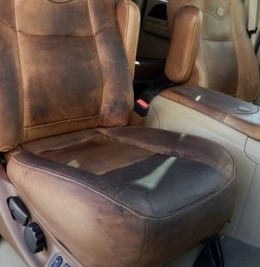 King Ranch Leather