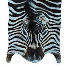 Full Zebra Hide