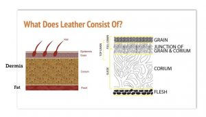 What Does Leather Consist Of