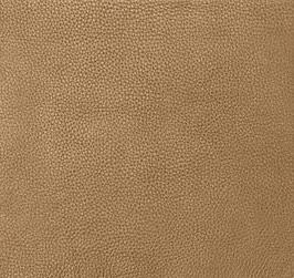 Camel Leather Hide